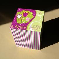 Упаковка для бумажных салфеток1