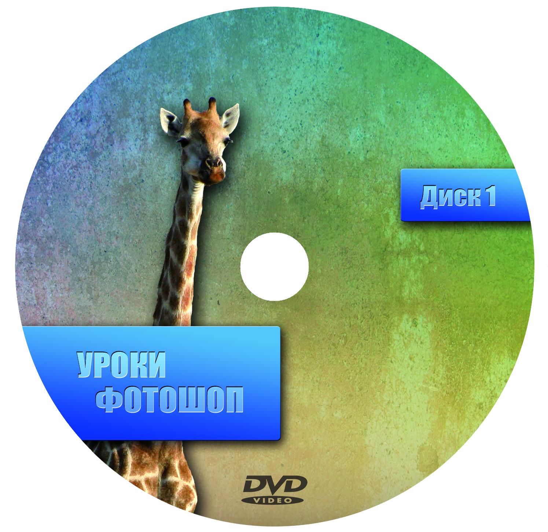 Создание дизайна DVD релиза (обложка, накатка, меню и т.п.) фото f_4d8f75802a823.jpg