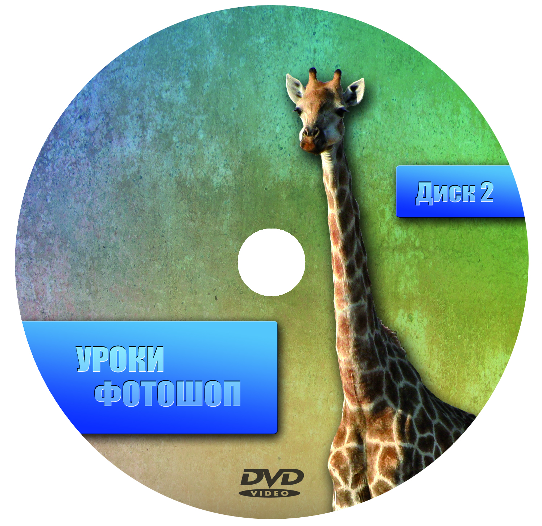 Создание дизайна DVD релиза (обложка, накатка, меню и т.п.) фото f_4d8f7c364fdb0.jpg