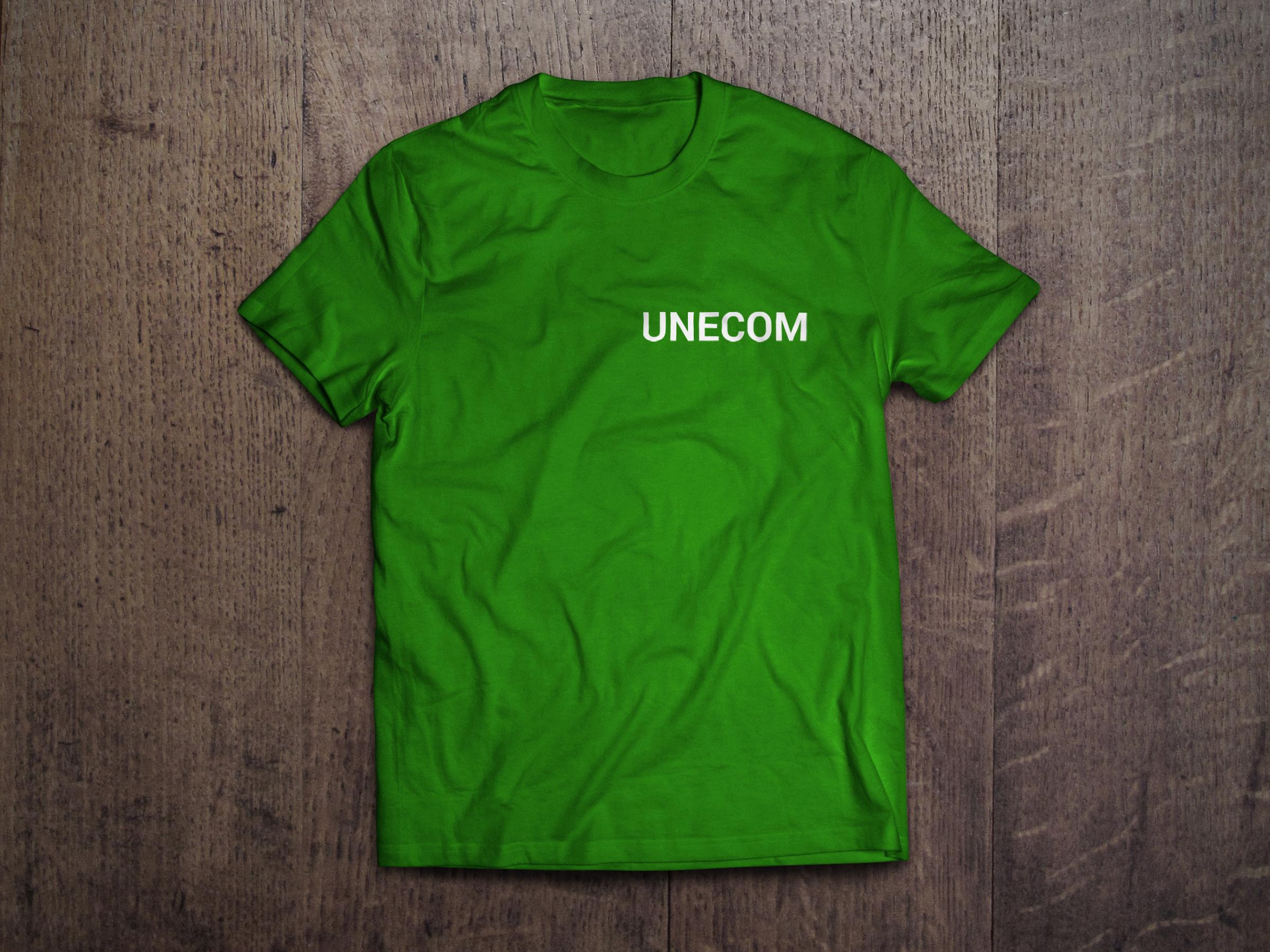 Разработка Сайта Для UNECOM Создание Домов Под Ключ