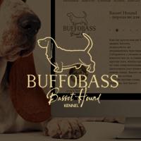 buffobass.com
