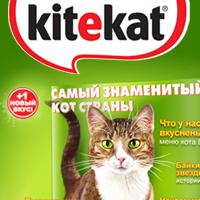 kitekat.ru