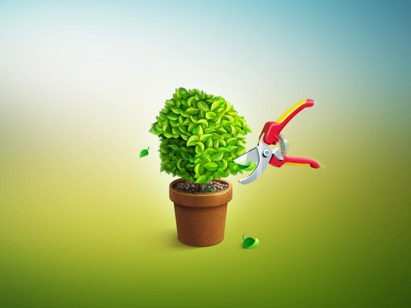 Иконка «Сад и огород»