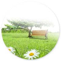 Сайт по продаже москитных сеток