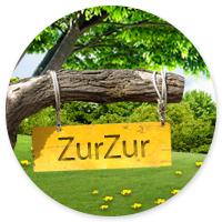 Шапка для сайта Zur-zur