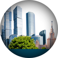 Консервативный дизайн интрфейса для сайта Департамента труда и занятости населения города Москвы