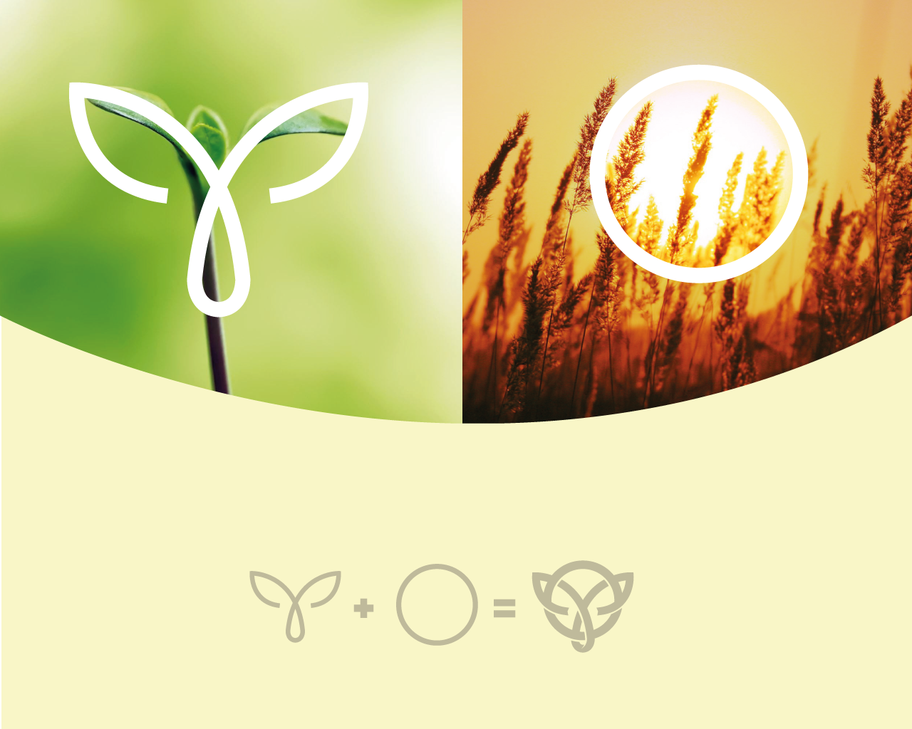 Логотип и фирменный стиль фото f_47159510eddd5fbe.png