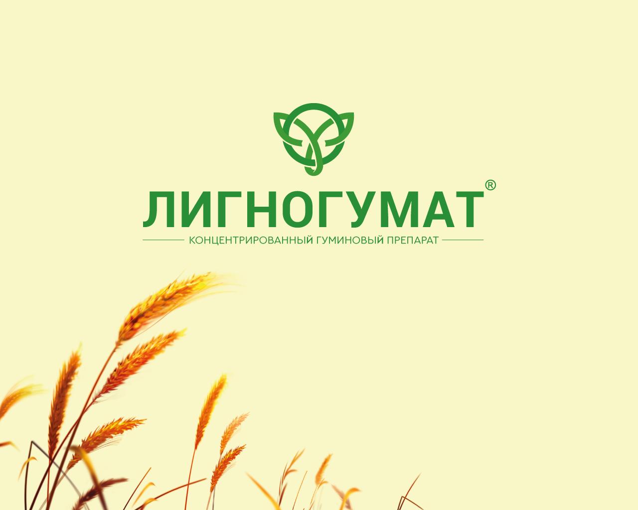 Логотип и фирменный стиль фото f_66159510fcc0a8de.png