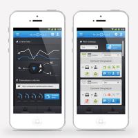 Мольное приложение MlmPult UI/GUI