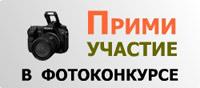 205х210 Фотоконкурс (флеш)