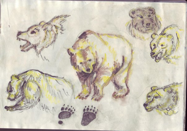 Этюд с медведем