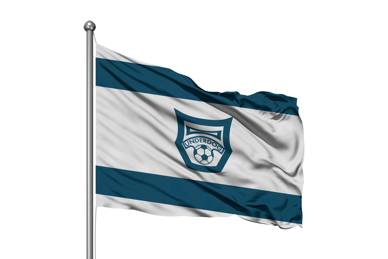 Футбольный клуб UNDERDOG - разработать фирстиль и бренд-бук фото f_6745caf805904519.png