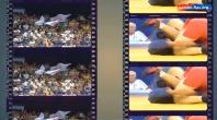 Рекламный ролик для Международной Федерации Самбо. Русская версия.
