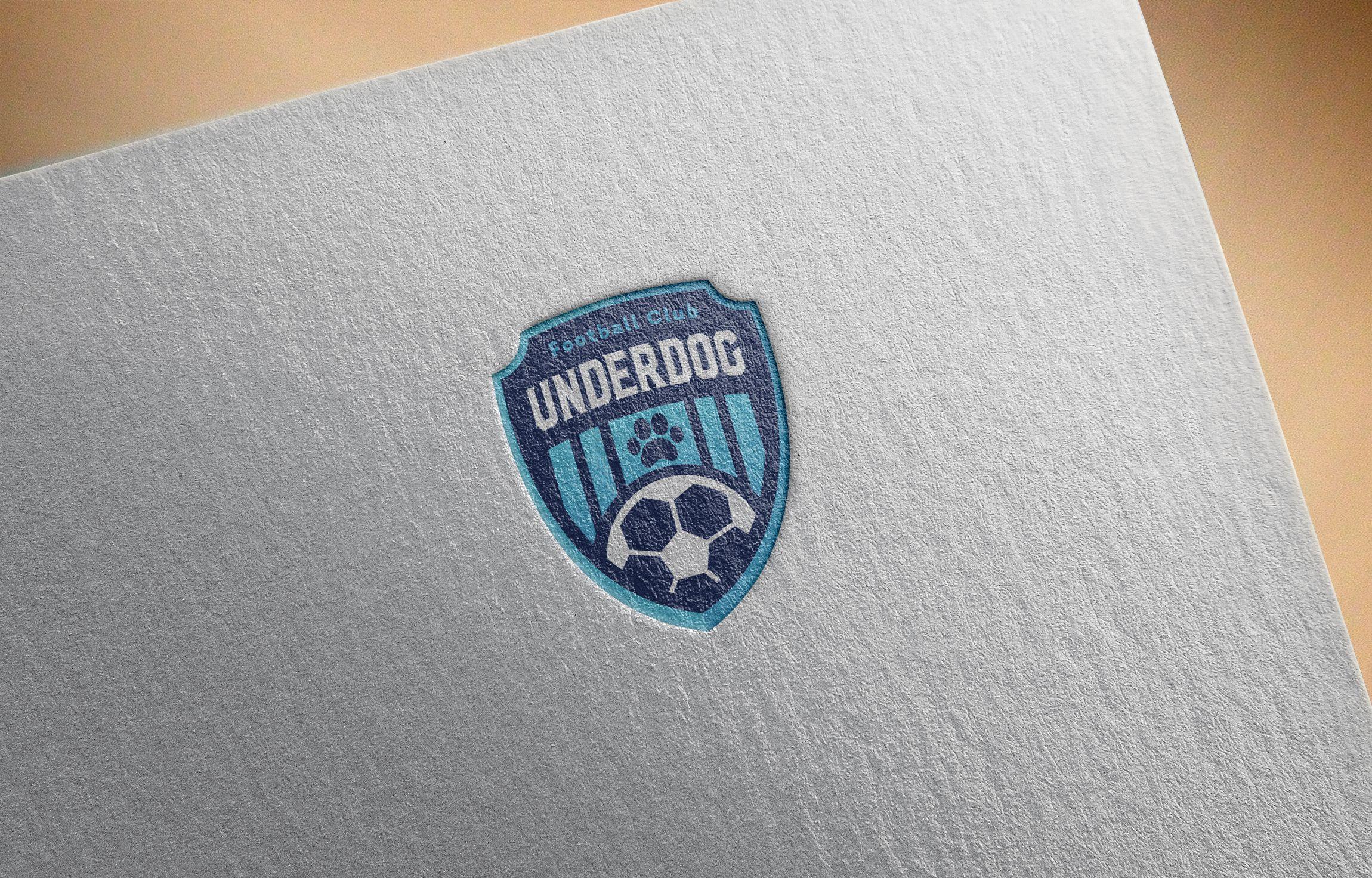 Футбольный клуб UNDERDOG - разработать фирстиль и бренд-бук фото f_7305cb45f922d8e1.jpg