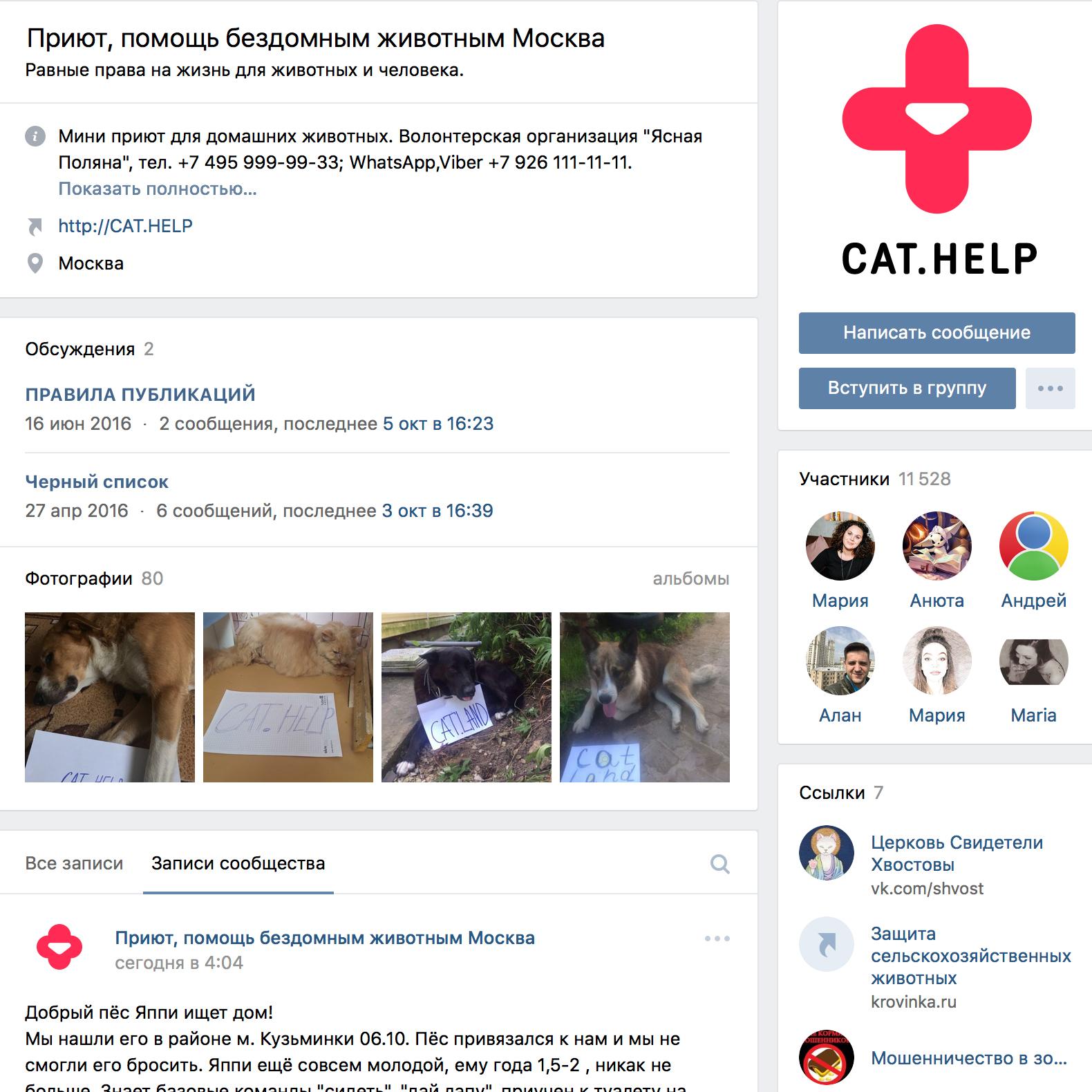 логотип для сайта и группы вк - cat.help фото f_30359d9c7edc2160.jpg