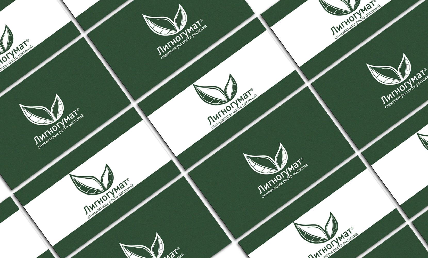 Логотип и фирменный стиль фото f_267594d19925ebce.jpg