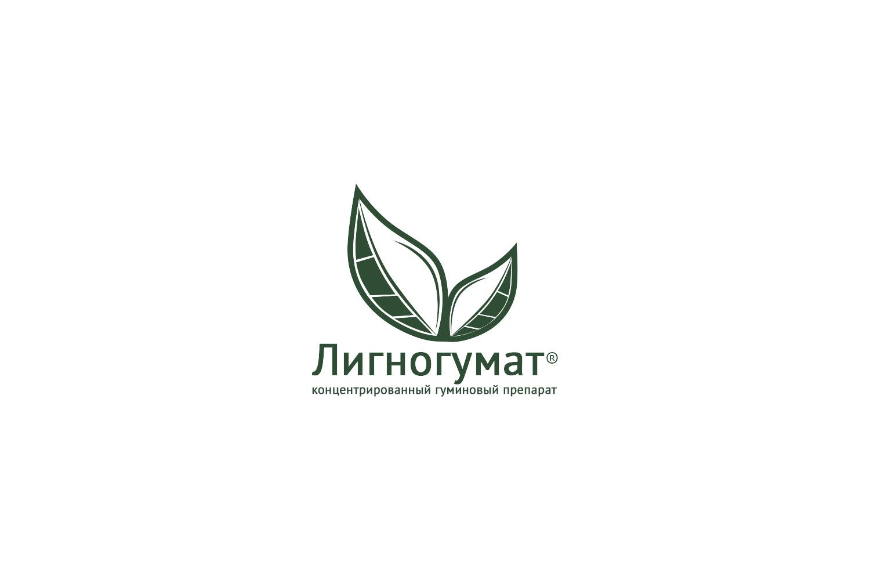Логотип и фирменный стиль фото f_745594d18e3e1c73.jpg