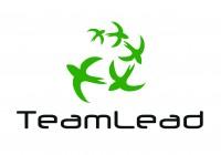 Логотип для TeamLead
