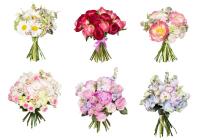 Обтравка, цветокоррекция, ретушь /цветы более 450шт/