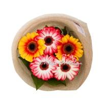Фотосъёмка цветов