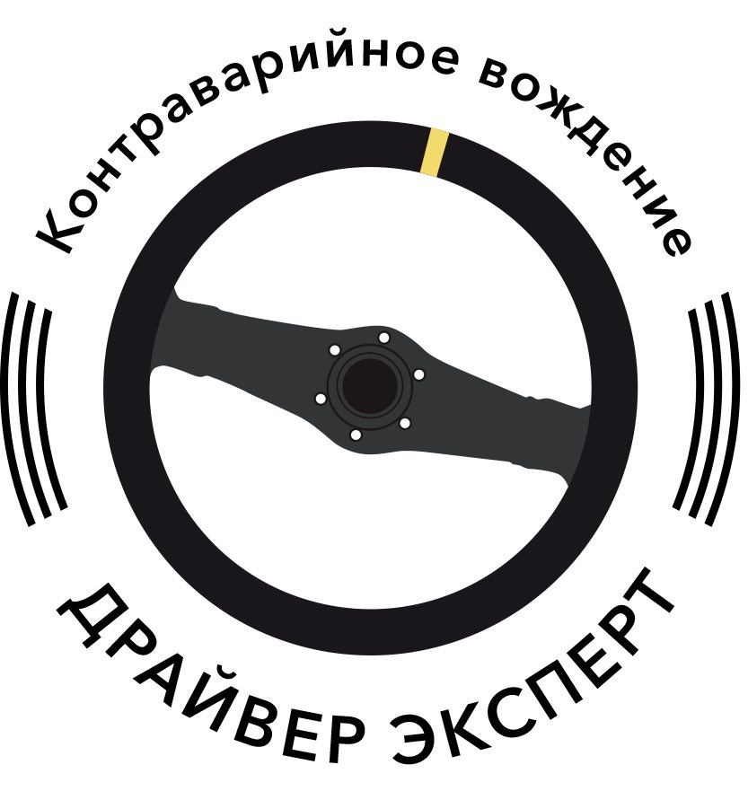 Логотип для школы вождения