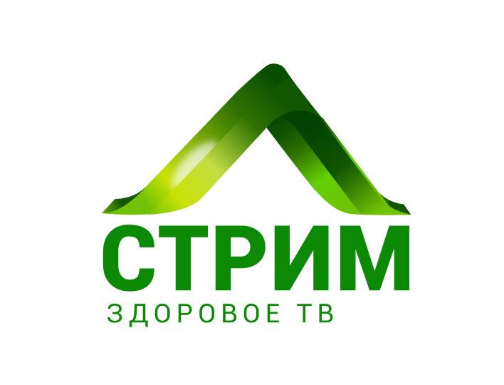 Создание концепции заставки и логотипа (телеканал) фото f_182566e8294550cd.jpg