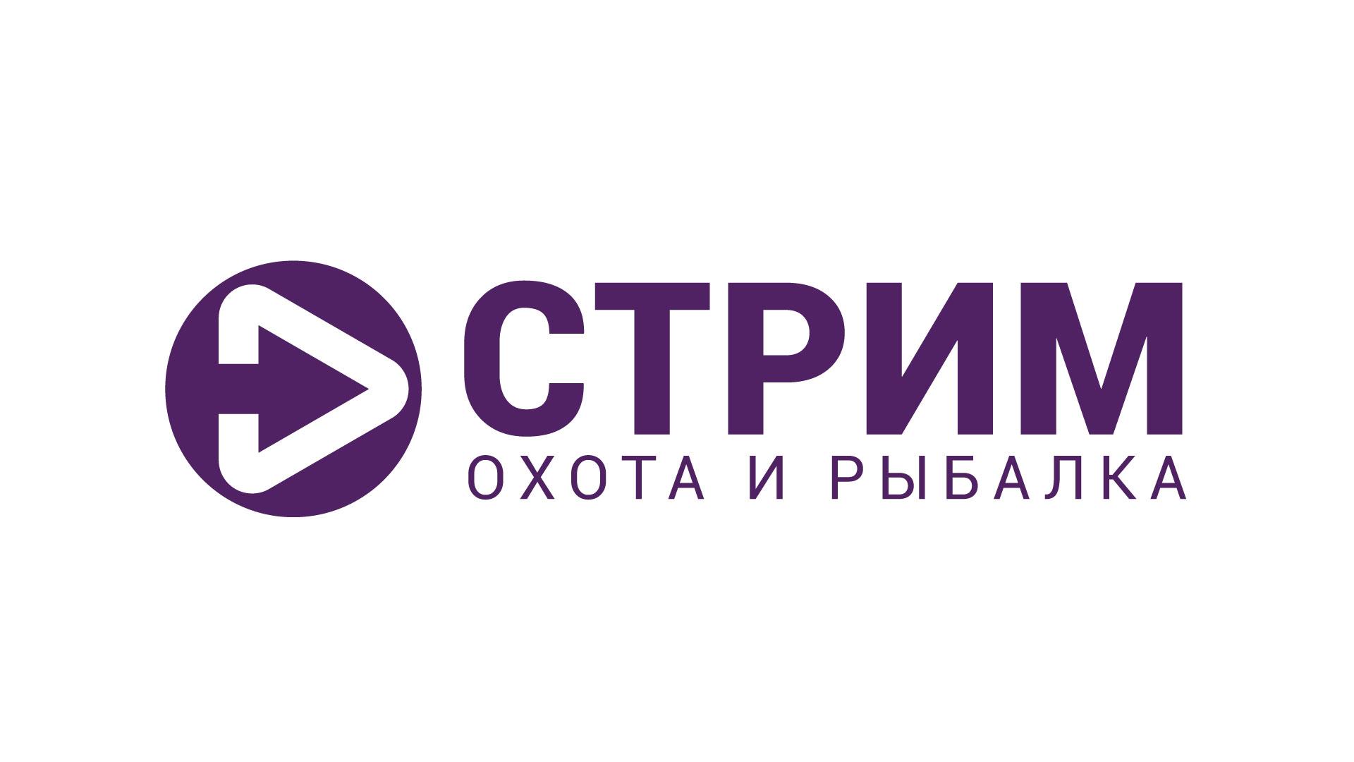 Создание концепции заставки и логотипа (телеканал) фото f_673566e82b754d93.jpg