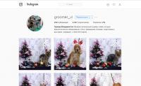 instagram groomer_vl