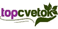 [РАСТЕНИЯ] Растения и аксессуары TopCvetok.ru