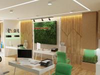 Офис в Эко стиле с чертежами 2