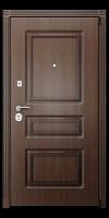 Входня дверь
