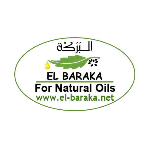 "Отрисовка в векторе логотипа ""El baraka"""