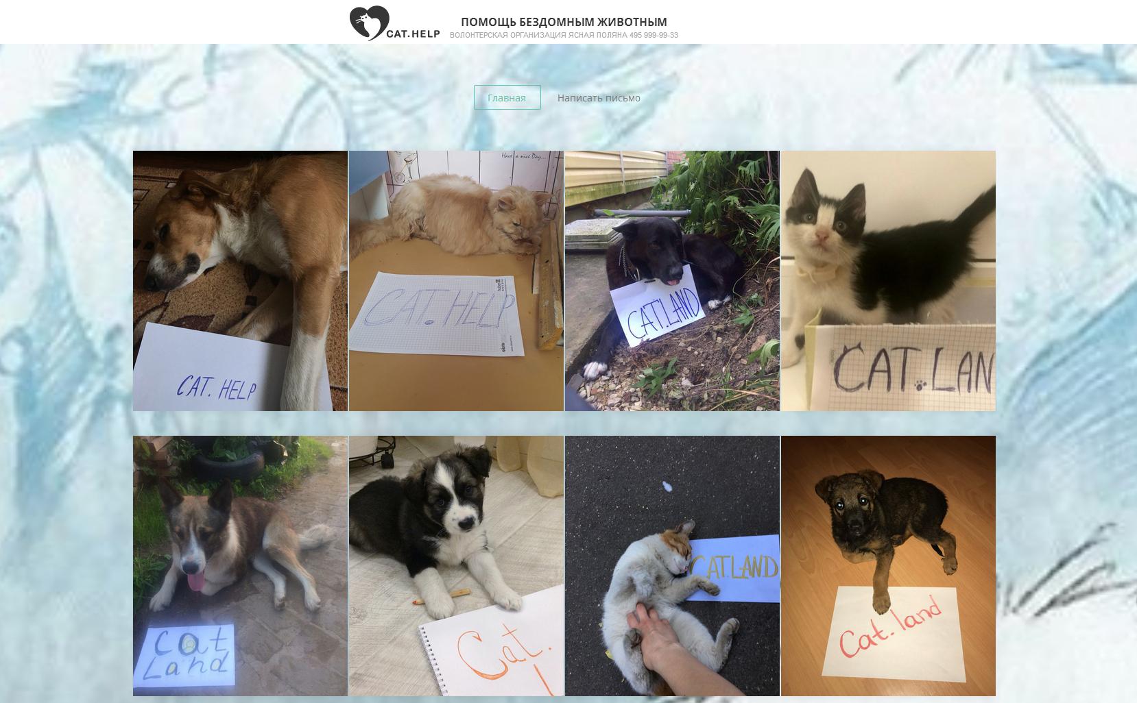 логотип для сайта и группы вк - cat.help фото f_73159da40c28e432.jpg