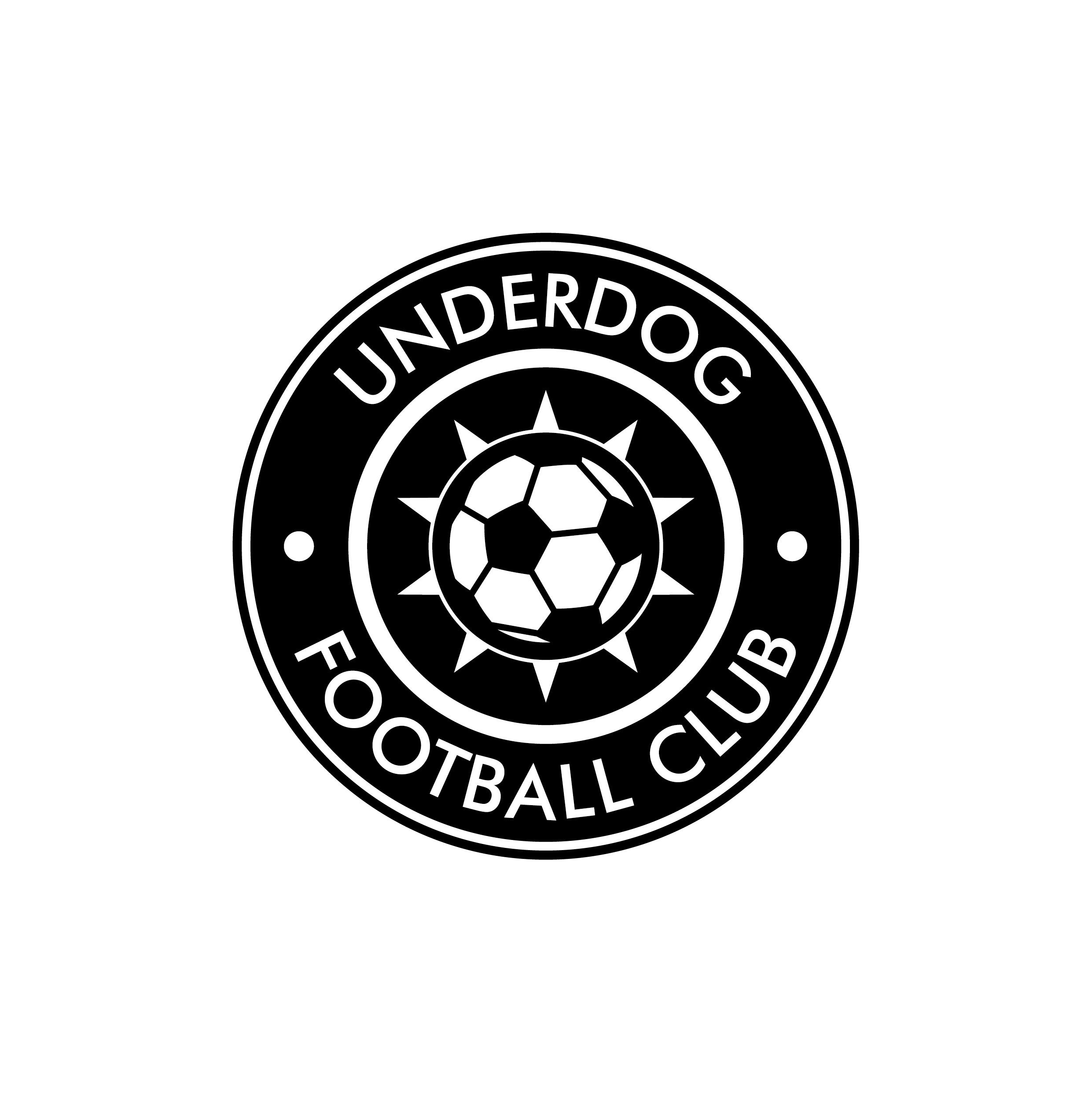 Футбольный клуб UNDERDOG - разработать фирстиль и бренд-бук фото f_0625cb08639a13ba.jpg
