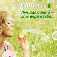 Модуль в журнал WellDiet