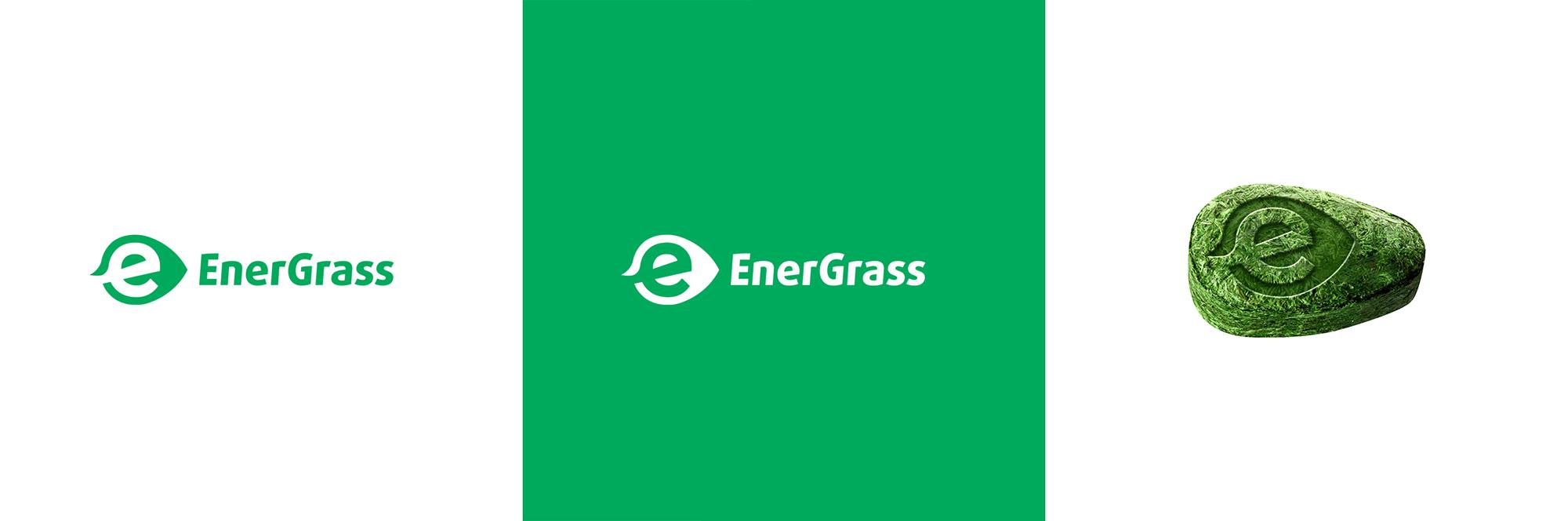 Графический дизайнер для создания логотипа Energrass. фото f_3755f8ffb282d38f.jpg