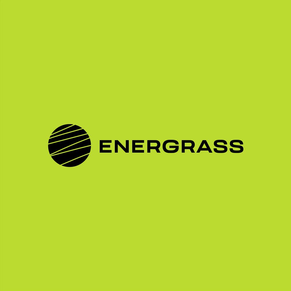 Графический дизайнер для создания логотипа Energrass. фото f_5705f858c30a0422.png