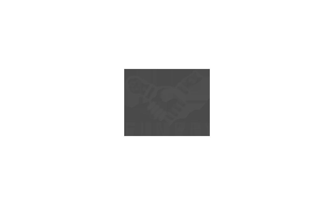 Логотип для FunPay.ru фото f_553599301102b269.png