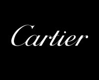 Художественная озвучка для Cartier ( English )