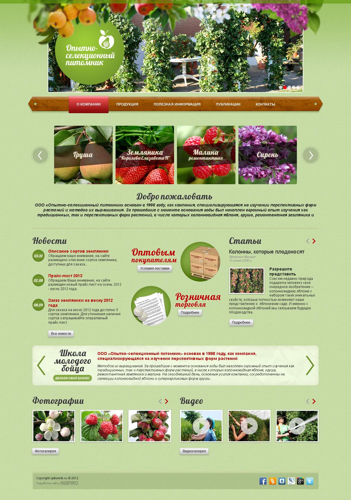Разработка дизайна сайта питомника