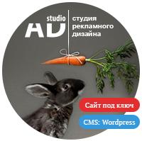 Разработка сайта ADsduio.ru