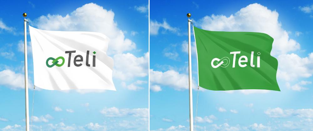 Разработка логотипа и фирменного стиля фото f_091590791e2f1b17.jpg