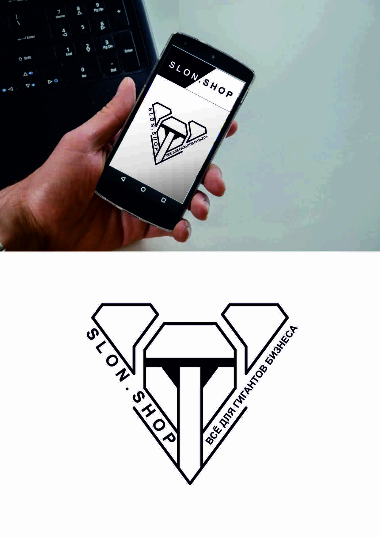 Разработать логотип и фирменный стиль интернет-магазина  фото f_8195991fe8245066.jpg