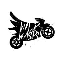 Wilp Wasps