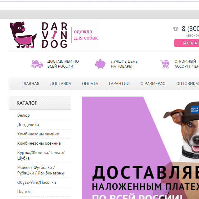 Создать логотип для интернет магазина одежды для собак фото f_133564c43e24d479.png
