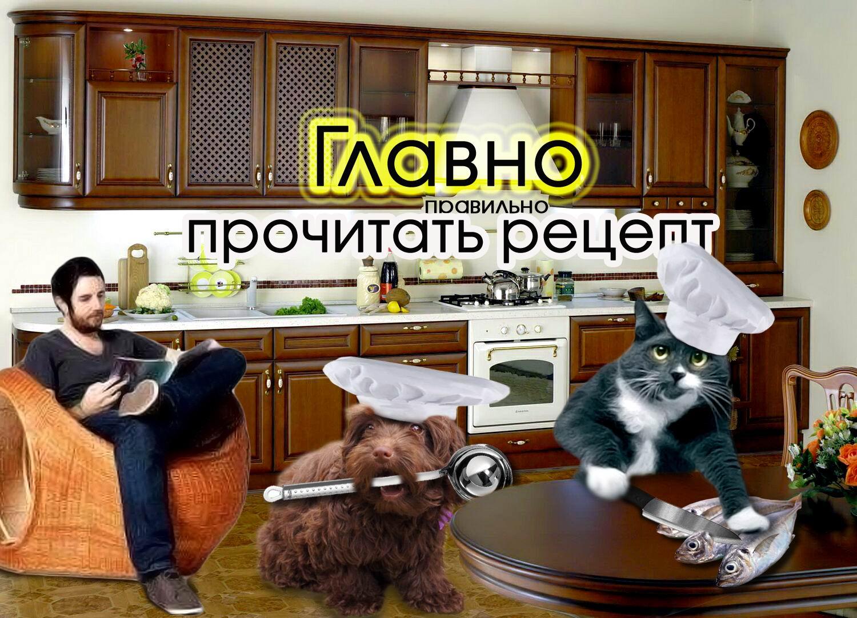 Создать интересный коллаж с участием животных фото f_49151dbdf9234c24.jpg