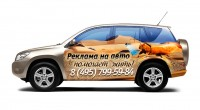Дизайн на авто (белка в пустыне)
