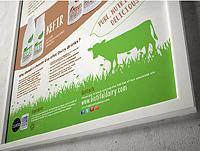 """Кисломолочные продукты """"Biotiful Dairy"""". Великобритания."""