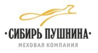 Адаптивная верстка Сибирь Пушкина