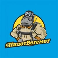 "Разработка эмблемы для ""Pilotbegemot"" а также майки, кружки, аватарки"
